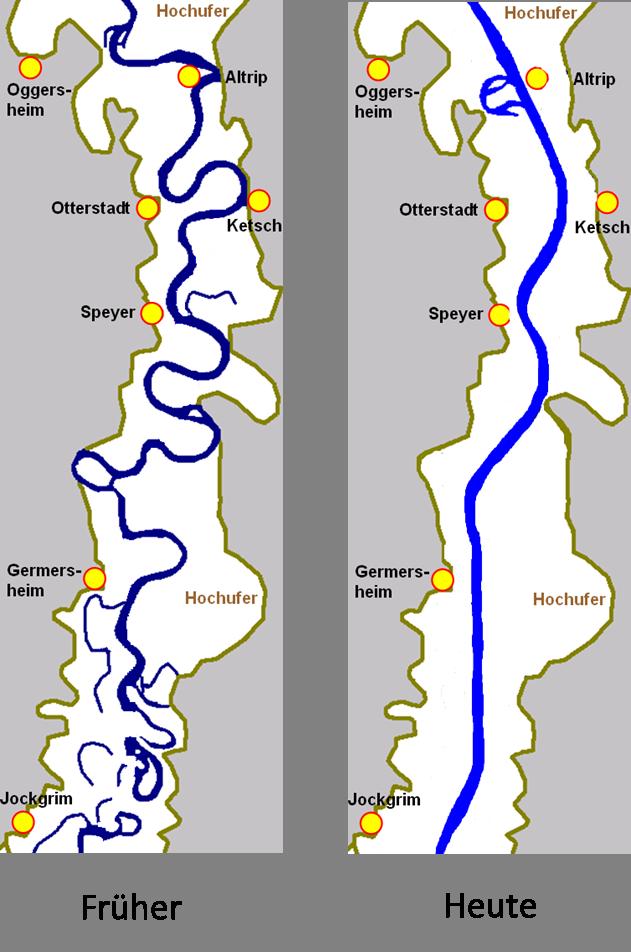 Begradigung Des Rheins